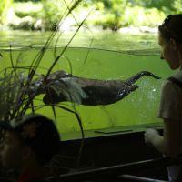 Naturoparc Natur  Und Tierpark Otter