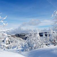 Winterzauber Kniebis Schwarzwald Schnee Winter