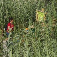 Naturoparc Natur  Und Tierpark Mais