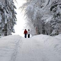 Winterzauber Kniebis Spaziergang