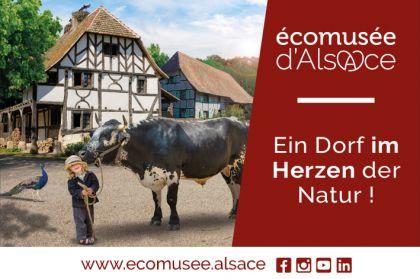 Ecomusee 2021