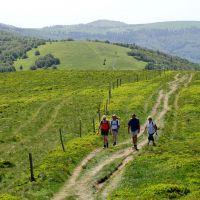 Familienurlaub Hochvogesen Wanderergruppe