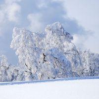 Winterzauber Kniebis Schnee Kleid