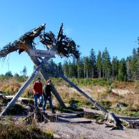 Nationalparkregion Schwarzwald Lotharpfad Eingang
