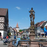 Burgen Schloesser Gengenbach Brunnen