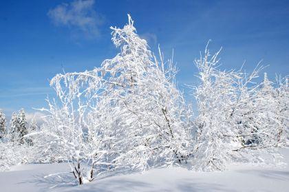 Winterzauber Kniebis Freudenstadt