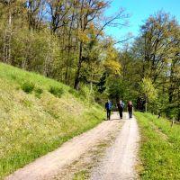 Der Westweg Einer Der Kultwege Im Schwarzwald 04 Auf Dem Westweg Unterwegs 060616 Rgb 72dpi