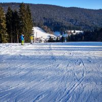 Wintersport Im Schwarzwald Reinerzau Im Schwarzwald1200px