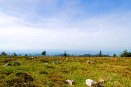 Nationalparkregion Schwarzwald Hornisgrinde Hochplateau