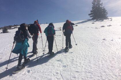 Fruehlingssonne Und Schneeschuhwandern 6