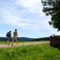Region Schwarzwald Elsass Schwarzwald Wandern