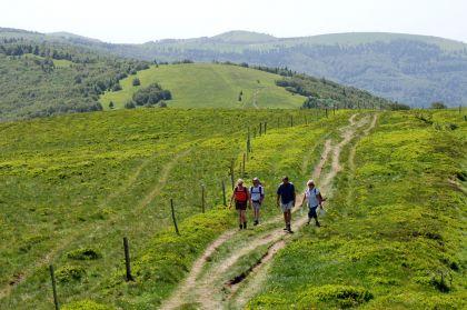Wandern Hochvogesen Wanderergruppe