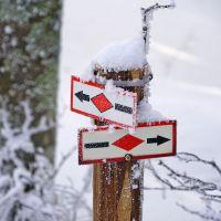 Wer ist der Held an diesem Wintertag? Furtwangen, Westweg im Schnee
