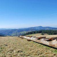 Wandern Schwarzwald Längste Baumliege Todtnau