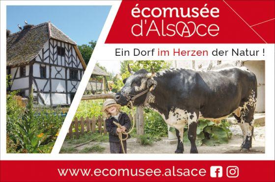 Ecomusee 2020