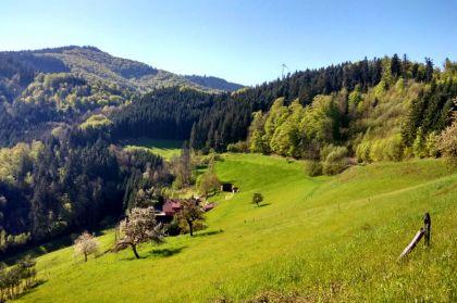 Der Westweg: Wunderschöne Aussichten