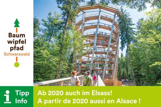 Baumwipfelpfad 2020