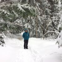 Winter(traum) Auf Dem Kniebis Winterwanderweg