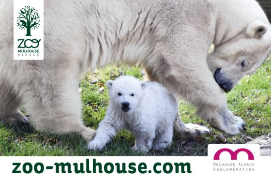 Zoo Mulhouse 2021