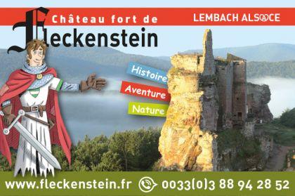 Fleckenstein 2021